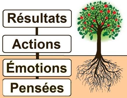 Pensées, Emotions, Actions, Résultats