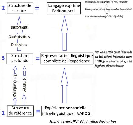 Langage verbal et expérience en PNL