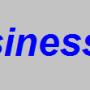 Business 3G